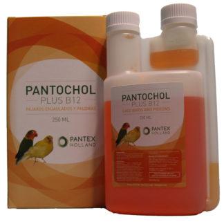 Pantochol plus B12-0